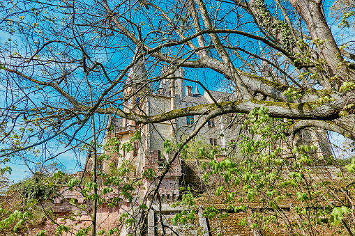 Marienburg Castle behind branches with fresh young green leaves