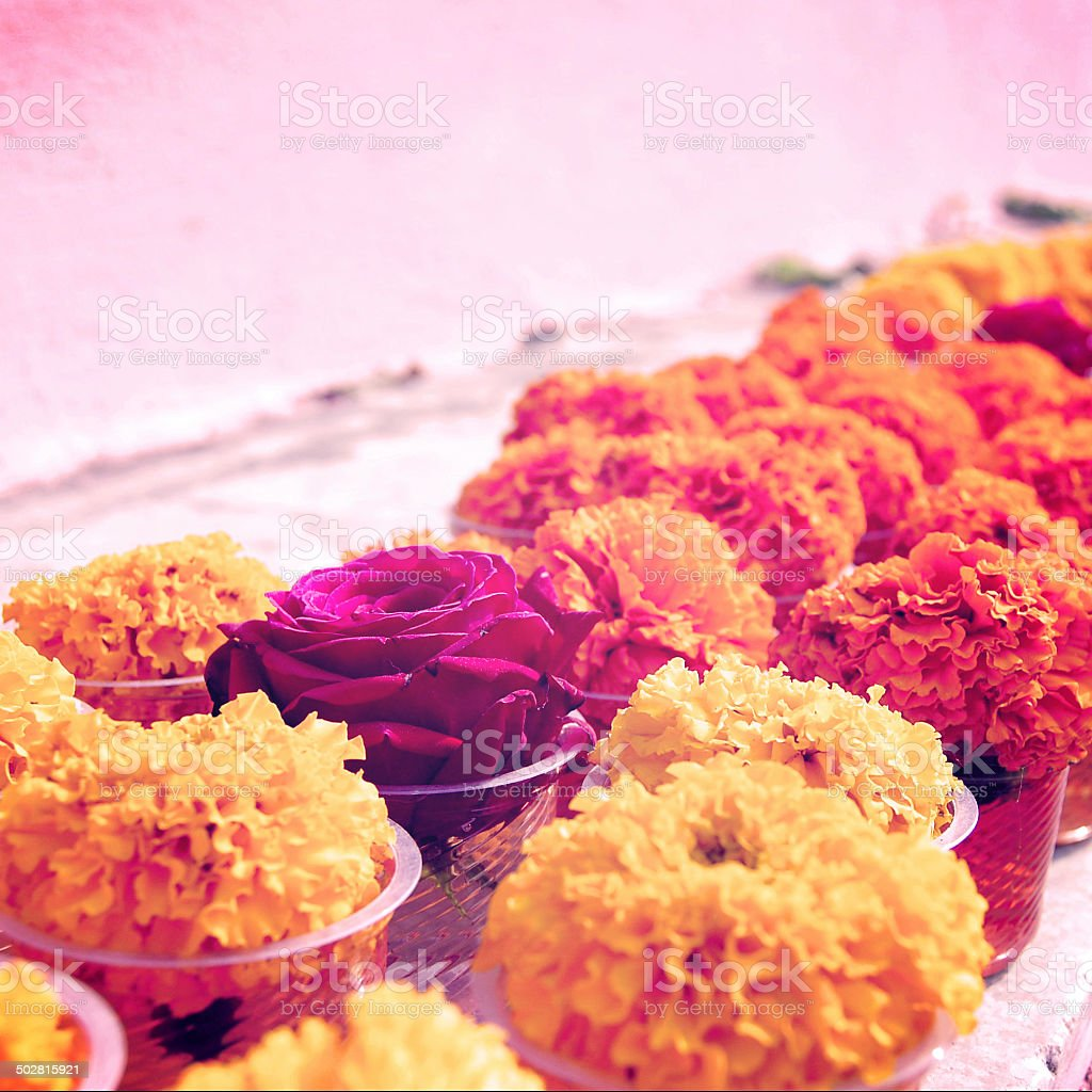 Marigold and rose for offering respect at Mahabodhi Temple. stock photo