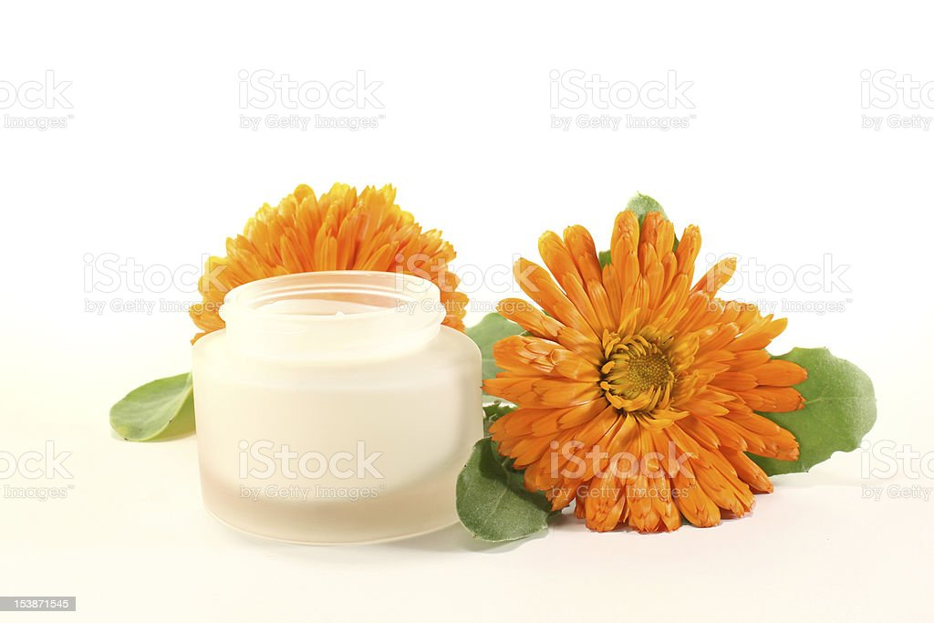 marigold salve with blossom stock photo