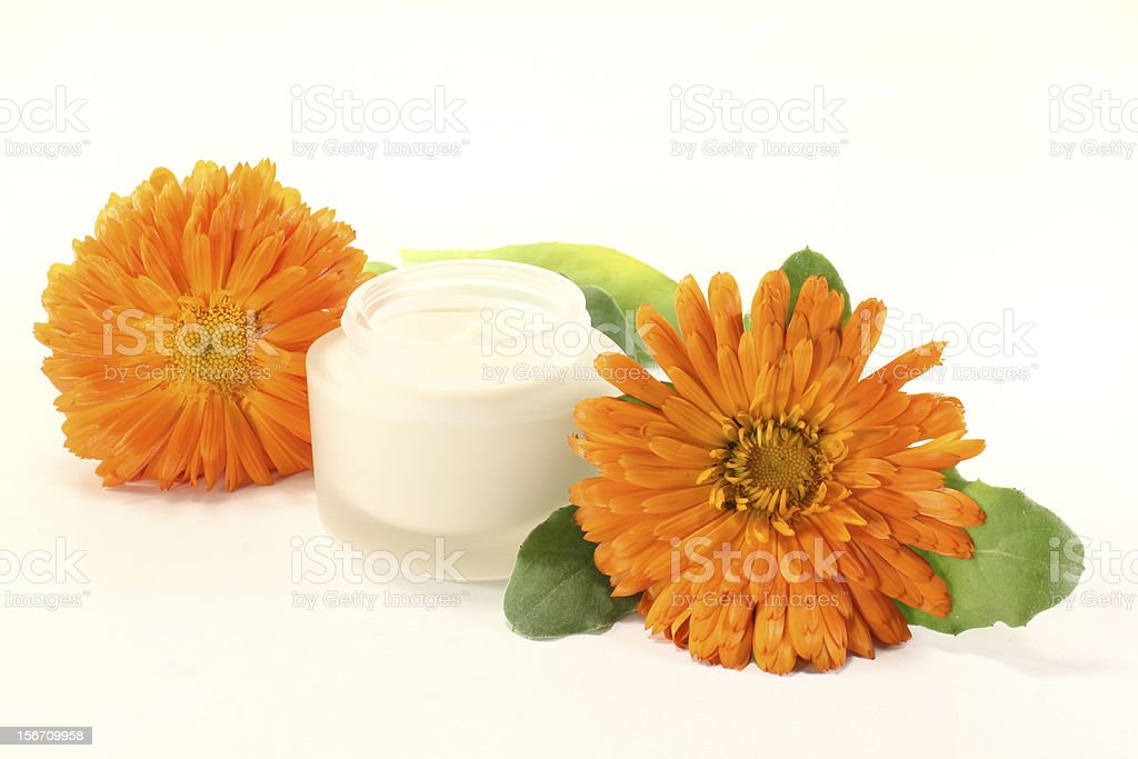 marigold salve with flowers stock photo