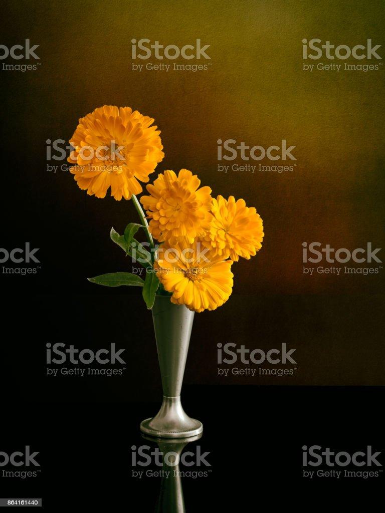 Marigolds in vase. Calendula. royalty-free stock photo