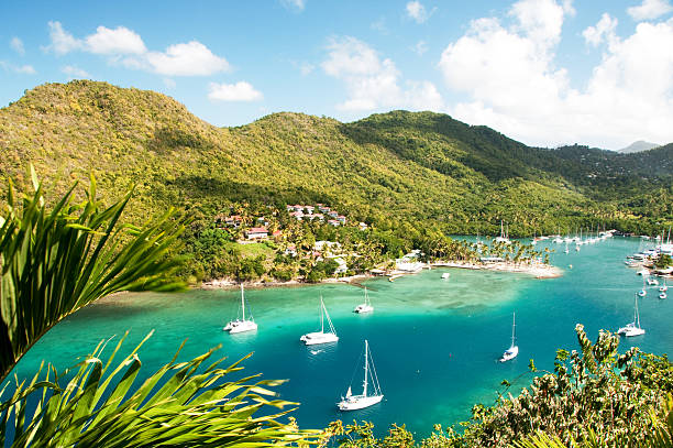 marigot bay, st. lucia - caribbean stock pictures, royalty-free photos & images