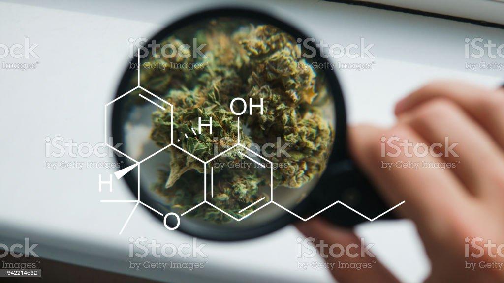 marijuana 420 culture stock photo