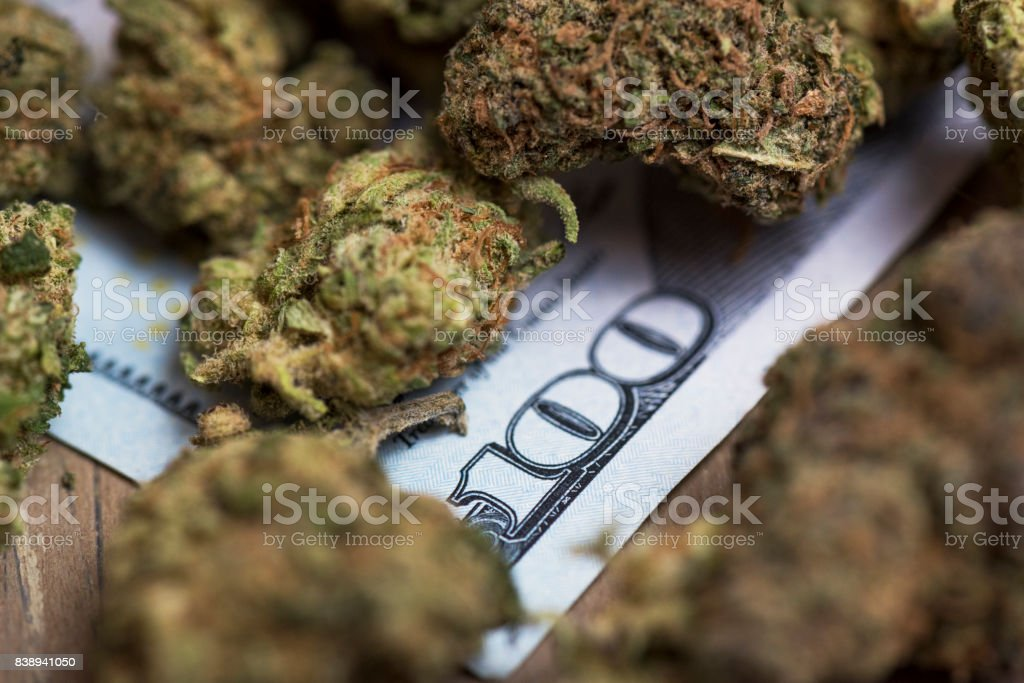 Marijuana and 100 dollar bill, cannabis industry stock photo