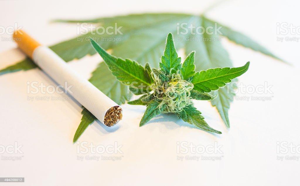 Marijuana and Cigarette - Royalty-free 2015 Stock Photo
