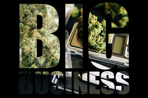 Marihuana Big Business Witte Achtergrond Kegels Van Cannabis Bloemen Onkruid Leugen Op De Weegschaal Closeup Bovenaanzicht Stockfoto en meer beelden van Blad