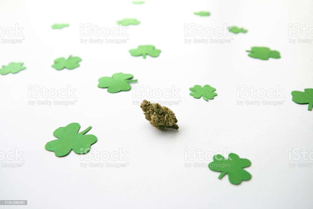 Marijuana Bud against Four and Three Leaf Clovers St Patricks St Pattys Day - High Angle, Centered stock photo