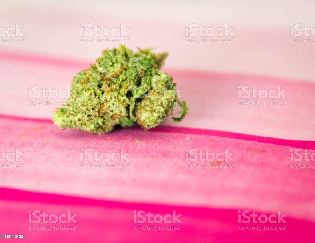 Marijuana bud isolated on pink paper royalty-free stock photo