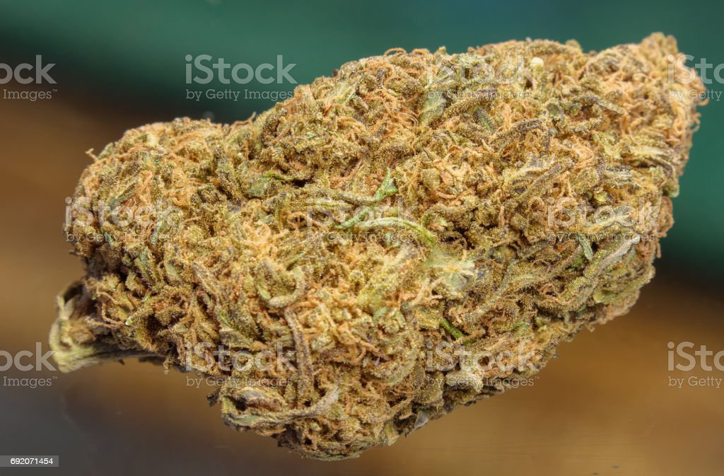 Marijuana Bud stock photo