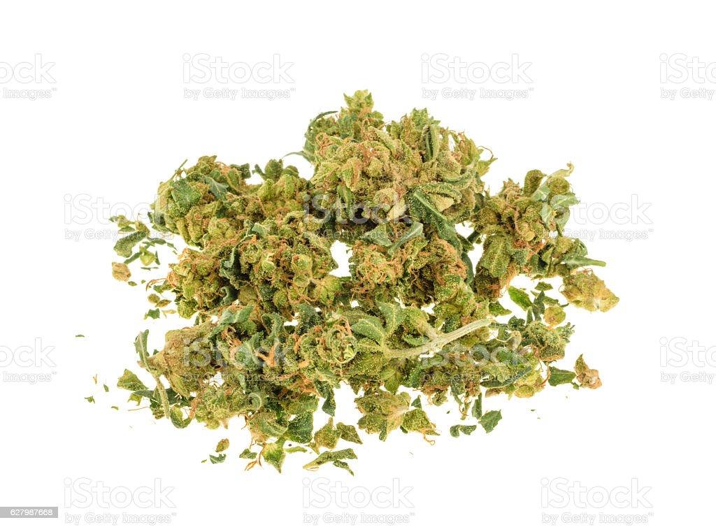 Marijuana buds isolated on white background stock photo