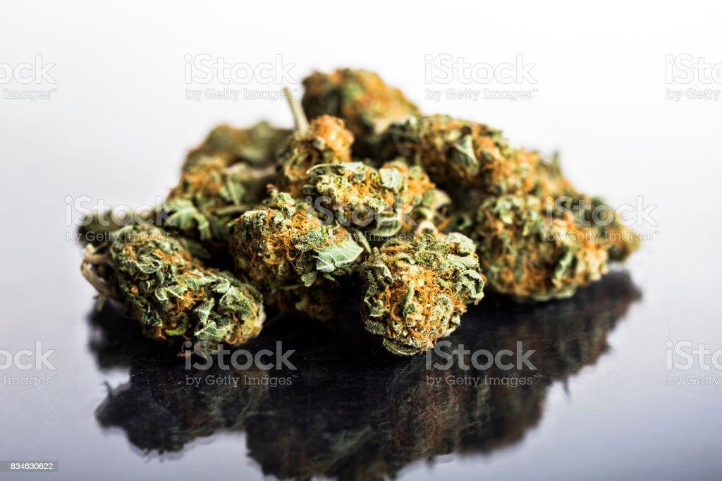 Marijuana buds on white background stock photo