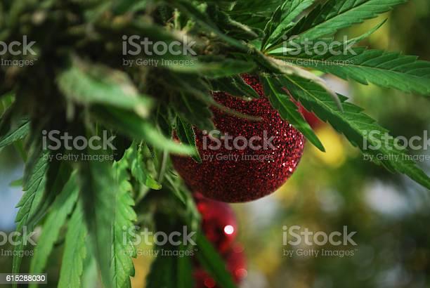 Marijuana christams picture id615288030?b=1&k=6&m=615288030&s=612x612&h=dfeyqlh86y3evorox5g jipy8 eyqawu158672hu2bg=