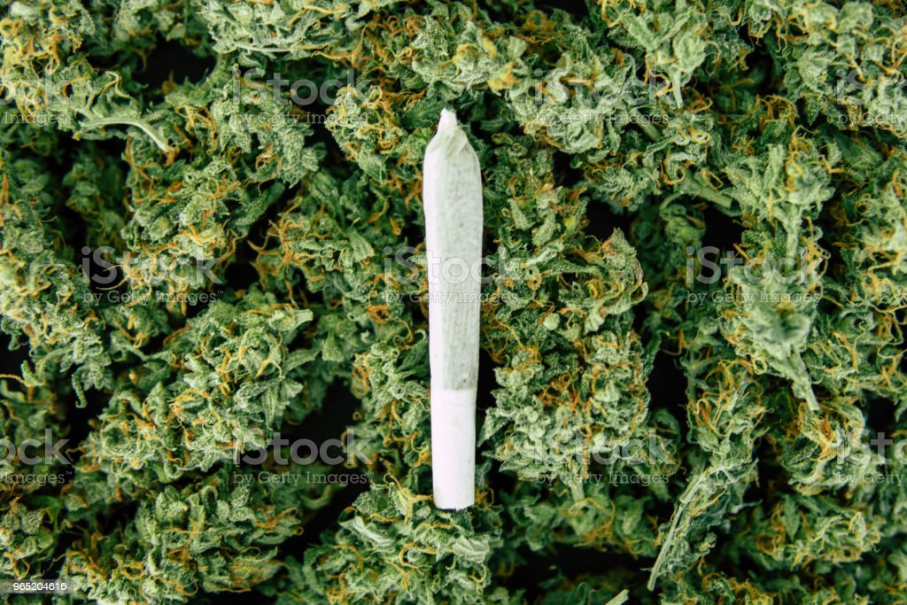 , marijuana flower weed top view copy spase, Joint and Background of buds cannabis royalty-free stock photo