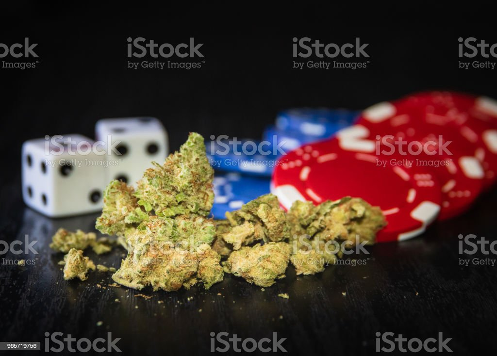 Marijuana flower up close with poker chips and dice in background