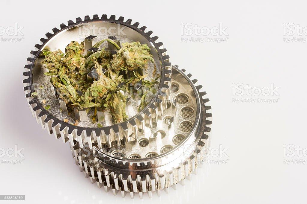Marijuana in grinder stock photo