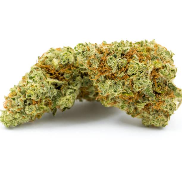 Marijuana Isolated White Background stock photo