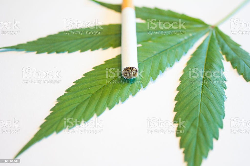 Marijuana Leaf and Cigarette royalty-free stock photo