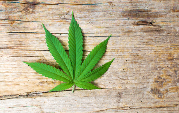 marihuanablatt auf rustikalen hölzernen hintergrund - hanfblatt stock-fotos und bilder