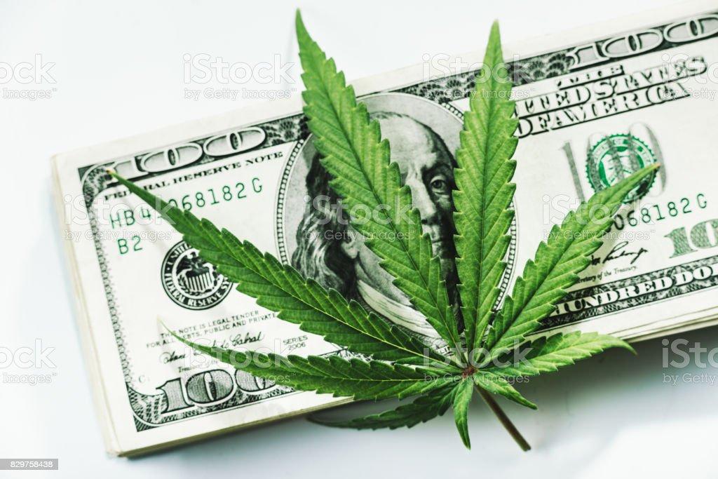 Marijuana money stock photo