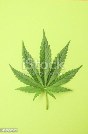 istock Marijuana 484580523