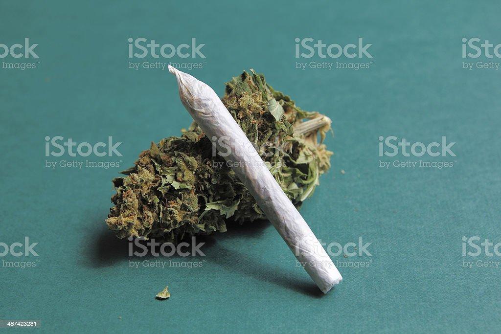 Marijuana stock photo