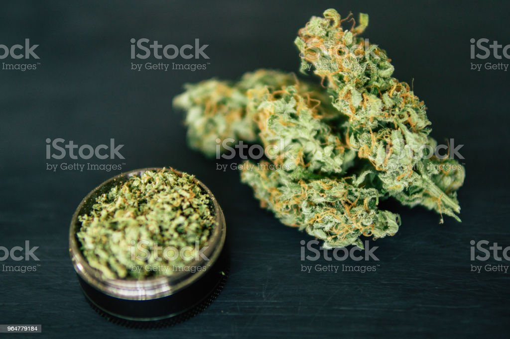 marijuana weed and grinder with trichomes Macro of cannabis bud royalty-free stock photo