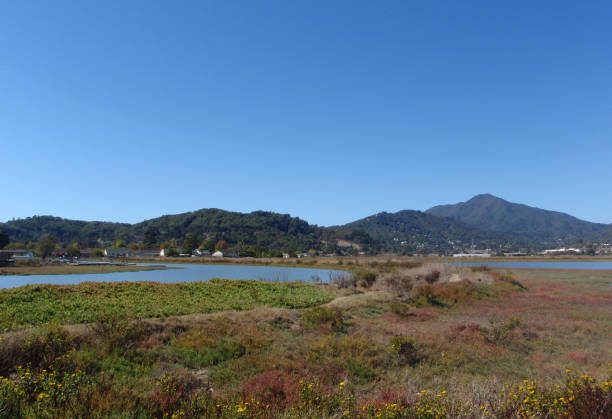 Marin County view with the calm waters of Corte Madera stock photo