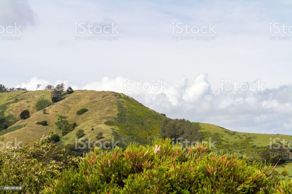 Marin Headlands stock photo