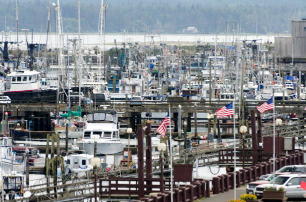 Marina filled with boats in Westhaven Cove, Westport, Grays Harbor stock photo
