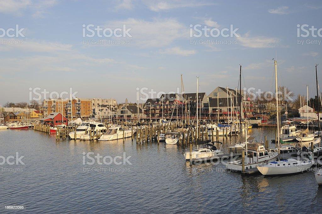Marina in Annapolis royalty-free stock photo