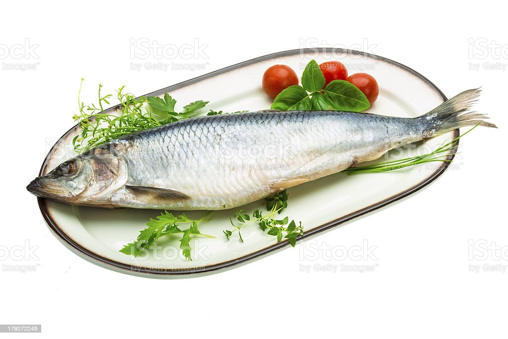 Marinated herring with herbs royalty-free stock photo