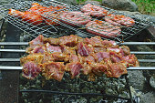 Marinated shashlik from pork preparing on a bonfire charcoal. Popular eastern dish can be called Shish kebab