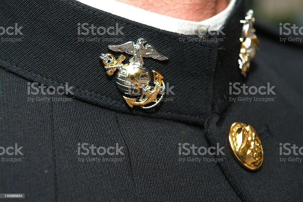 Marine badge consisting of eagle and anchor on collar royalty-free stock photo