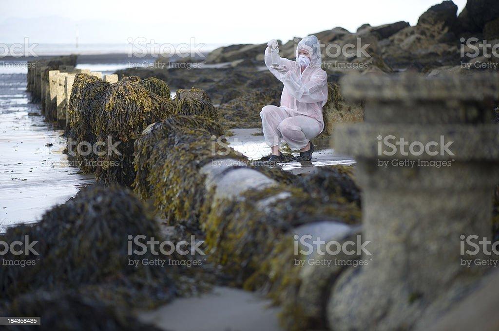 marine conservationist - Photo