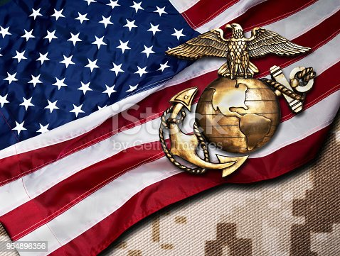 Marine eagle ,globe and anchor with American flag background.