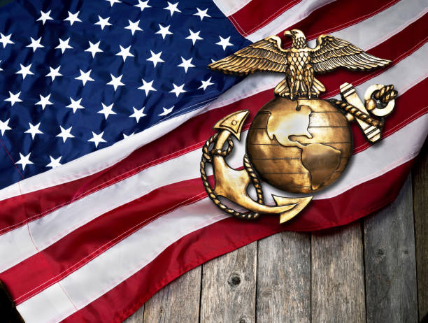 Marine Emblem and American Flag. Marine eagle, globe and anchor with American flag background. insignia stock pictures, royalty-free photos & images