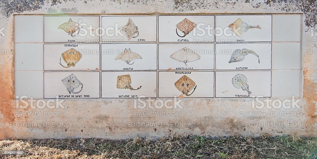 Marine life stingray tiles royalty-free stock photo