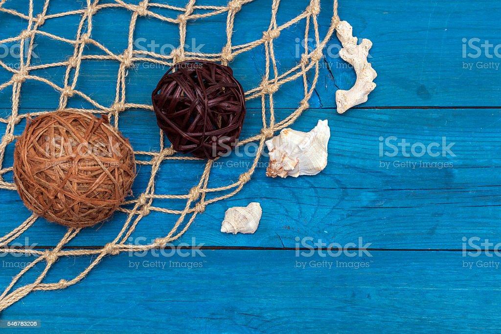 Ракушки на морсой сети