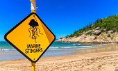 A sign on the beach to warn swimers in Queensland Australia of marine stingers in the water