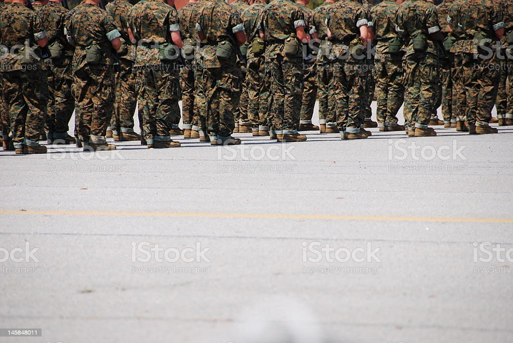 Marines at Attention stock photo
