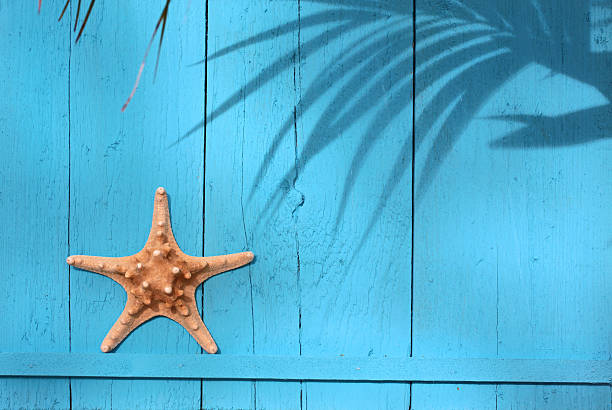 Maritime decorations Maritime decorations on a bright blue wooden wall beach hut stock pictures, royalty-free photos & images