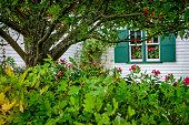Rural house and yard on Prince Edward Island, Canada