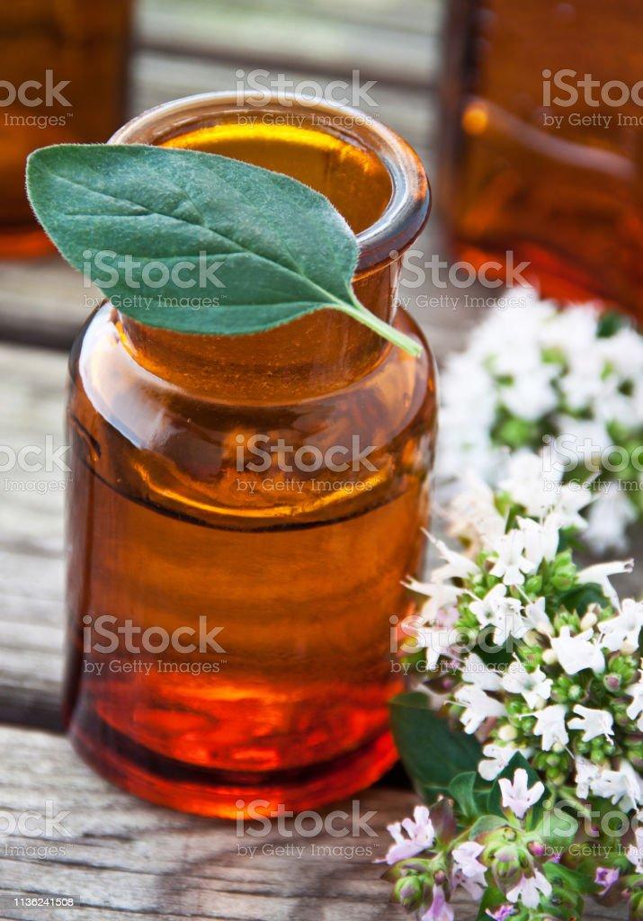 Marjoram Oregano oil herbal medicine background