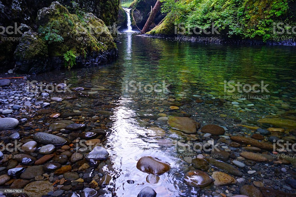 Mark O. Hatfield Wilderness stock photo