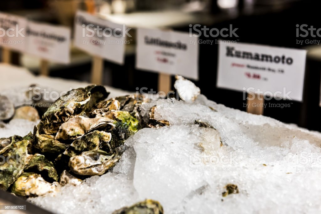 0e5ad6513ece Market food shop interior inside with kumamoto oysters on retail display  with ice