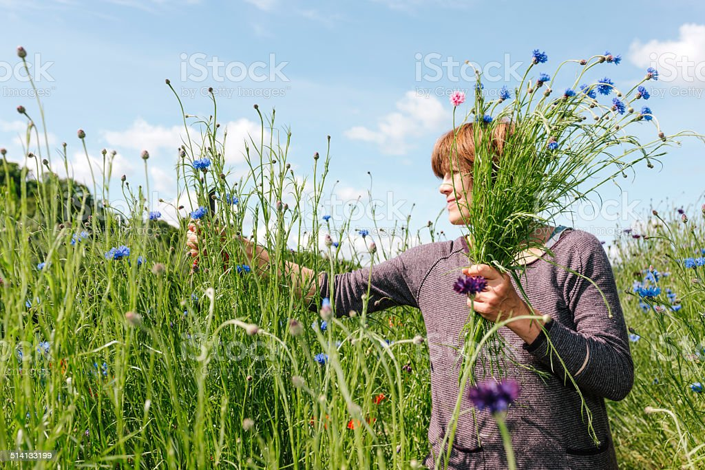 Market gardening, wild flowers stock photo