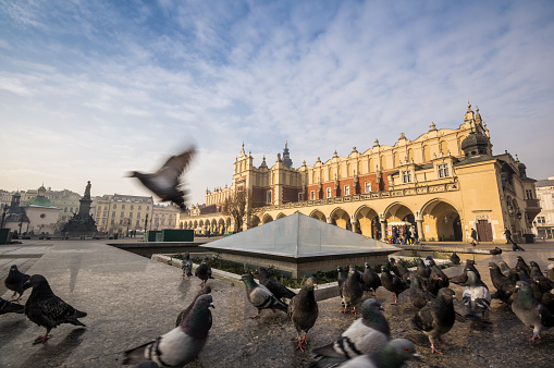 Market square in Krakow, Poland, Europe
