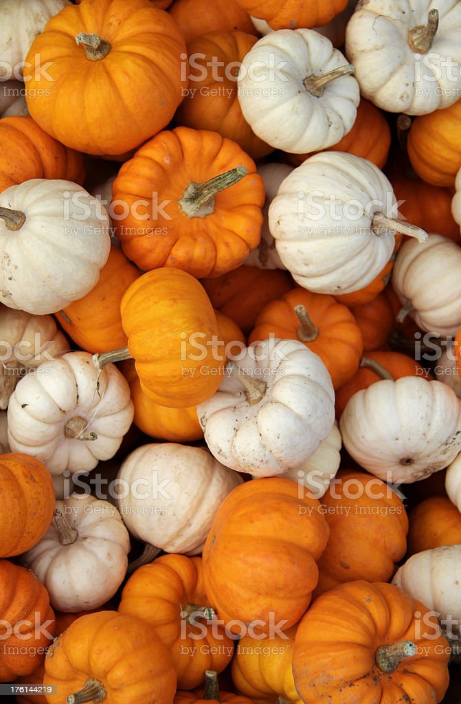 Market Stall Pumpkins Top Down royalty-free stock photo