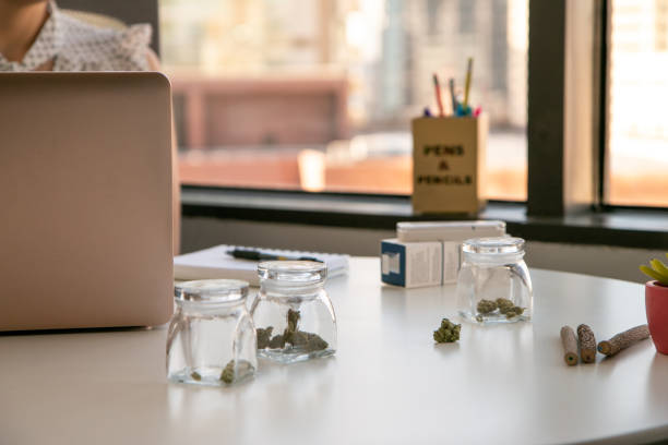 Marketing for Marijuana Business setting in a Bright, Soft Lit Office. stock photo