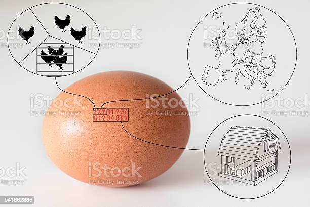 Marking code numbers printed in egg explanation drawings picture id541862386?b=1&k=6&m=541862386&s=612x612&h=iewqhqbdsay3kers2icwc8vtfcekish49ngwq cegrq=